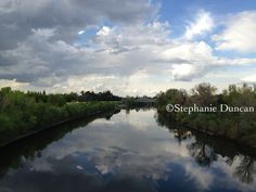 American River Reflection