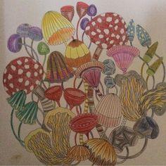 «By @fleurmarney  #arttherapy #mandala #milliemarottafans #coloringbook #coloringforadults #instacolor #art #drawing #painting #coloring #milliemarotta…»