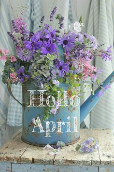"""""""Hello April"""" - with a bouquet of flowers in a watering can Seasons Months, Days And Months, Seasons Of The Year, Months In A Year, April Images, Neuer Monat, April Quotes, Calendar Pictures, Hello March"""