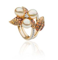 Orchid Collection | Autore Pearls