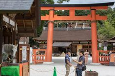 """A few days ago, I was at the Kamigamo Shrine (上賀茂神社) in Northern Kyoto, and took this picture of the """"Holy horse"""" in front of the second Torii (main entrance) and with a view of the Hosodono in the back ground. The horse later participated in a Shinto ceremony related to the Karasu Sumo event. #Kamigamo, #Kyoto, #Japan, #WorldHeritage, #上賀茂神社, #KarasuSumo"""