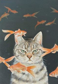 "Art Inspiration: Cute Grumpy Cat Acrylic Painting ""Goldfish & Cats"" By Ochiyopi. I Love Cats, Crazy Cats, Cute Cats, Animals And Pets, Baby Animals, Cute Animals, Funny Animals, Motifs Animal, Cat Drawing"