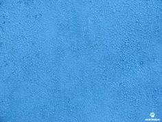 painted texture - Google Search