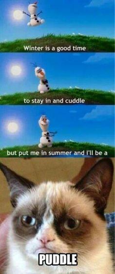 Frozen grumpy Cat!