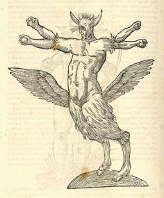 Monstrum tetrachiron alatum capite humano aurito. From: Ulissi ALDROVANDI [ALDROVANDUS]. Monstrorum historia, 1642.