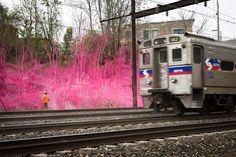 katharina grosse colorizes railway landscape for train riders - designboom | architecture