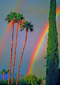 What Beautiful Rainbows!!
