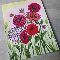 Botanica  #delineo #carandache #neocolor #lyra #aquarelle #watercolor #flowers #nature #blue #pink #poster #color #coloringbook #adultcoloring #zen #fun #fabercastell #dahlia #nature #pastel Follow me on :  Facebook : http://www.facebook.com/sundaymorningcreationscolorie  Youtube : http://www.youtube.com/c/sundaymorningcreations