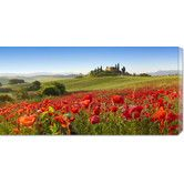 Found it at Wayfair - 'Orcia Valley in Spring, Tuscany' by Fabio Muzzi Photographic Print on Canvas