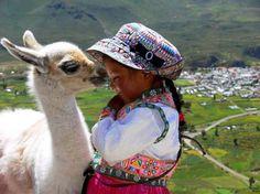 baby llama in Peru