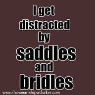 i get distracted by saddles and bridles