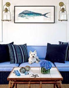 dog on furniture