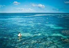 the ocean