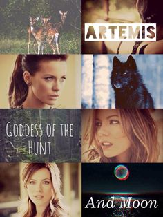 Percy Jackson And Artemis Dating Fanfiction, percy and reyna