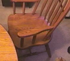 Chat qui fait une culbute sur une chaise.