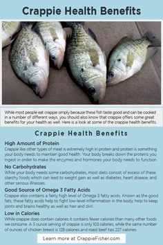 Crappie Health Benefits: Crappie like other types of meat is extremely high in protein and protein is something your body needs to maintain good health. Crappie also contains a fairly high level of Omega 3 fatty acids. Eating crappie as part of a lower-carb diet can increase your overall health and help keep you trim and fit. Crappie Fishing Tips, Fishing Tools, Fish Tank Design, Types Of Meat, Fish Farming, Good Fats, Freshwater Fish, No Carb Diets, Get Healthy