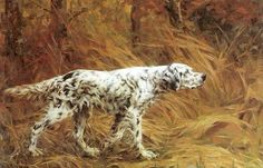 """Vintage Dog Oil Painting - English Setter """"Setter in the Field"""" by Percival…"""
