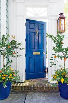 Play the Blues - Front Door Style - Southernliving. Strike a high note on an otherwise toned-down entry with a pop of color. This home has classic craftsmanship, such as fluted pilasters and a starburst transom, but what really shines—other than a cute pup—is the deep blue paneled door with shiny brass accessories.Paint Color: Gentleman's Gray (2062-20)