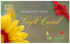 Check out the amazing NEW Gift Ideas from BBB Seed!