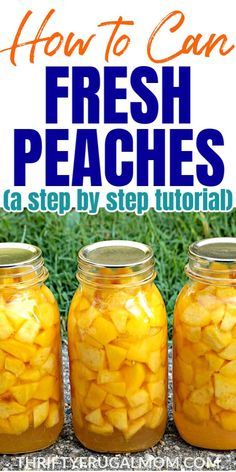 A simple step-by-step photo tutorial on how to can peaches. Perfect for beginners! So easy you'll be canning peaches in no time! Easy Canning, Canning Tips, Home Canning, Canning Recipes, Easy Dinners For Two, Easy Dinner Recipes, Crockpot, Canning Peaches, Canning Vegetables