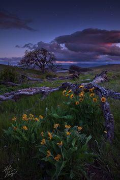 The Dalles at Twilight - Oregon