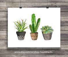 Impresión de arte cactus | Acuarela cactus | Cactus acuarela pintada a mano | decoración acogedora arte de pared para imprimir  16 x 20 imprimir fácilmente reducido a 8 x 10.  HECHO CON AMOR ♥  Comprar 2 obtener 1 gratis! Código de cupón: FREEBIE  ____________________________  Imprimir tantas veces como quieras, bien para uso personal y pequeño comercial.  -------------------------------------------------------------------------------------- Después de confirmado el pago usted será llevado a…