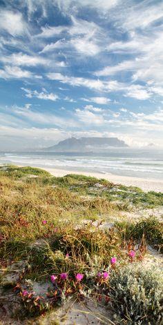 Der Strand von Kapstadt. Weitere schöne City-Beaches gibt es hier: http://www.travelbook.de/welt/Nach-dem-Sightseeing-zum-Baden-Die-schoensten-Stadtstraende-der-Welt-615253.html
