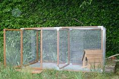 8x4 enclosed run with modified dog house