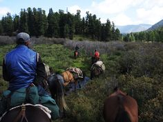 The ecological, historical and spiritual significance and values of the Khan Khentii Mountains of Mongolia, explored on horse riding tours with Stone Horse. Mongolia, Horse Riding, Bradley Mountain, Ecology, Trek, Tourism, The Incredibles, Horses, Explore