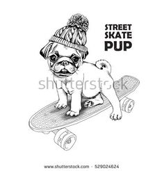 Pug puppy in a knitted hat with pom-pom on a skateboard. Vector black and white illustration. Hat Vector, Skate Art, Dog Illustration, Black And White Illustration, Pom Pom Hat, Pugs, Knitted Hats, Puppies, Tattoo