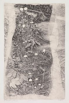 Livio Ceschin(Italian, Giardini marginali / Marginal gardens - etching and drypoint I like the way this art work looks so real and is really detailed. Etching Prints, Gravure, White Art, Pencil Art, Landscape Art, Art Drawings, Drawing Drawing, Paper Art, Graphic Art