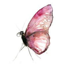 Original painting of a pink butterfly. Read about my drawing method in my ebook: https://www.etsy.com/nl/listing/195947602/engelstalig-boek-over-zen-tekenen-zen?ref=shop_home_feat_3 Find the bigger Art print of this painting here: https://www.etsy.com/nl/listing/198215345/aquarel-schilderij-van-een-roze-vlinder?ref=shop_home_active_1 The work is painted on heavy white paper (225 grams) and when you order it, it will be vacuum glued (with acid free glue) on firm and acid free passe...