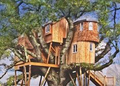 20 of the most luxurious tree houses youll ever see - Most Expensive Tree House In The World