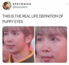 namjoon is a puppy confirmed Jhope, Kookie Bts, Kim Namjoon, Jung Hoseok, Taehyung, Bts Memes, Funny Memes, Cypher Pt 4, Jin