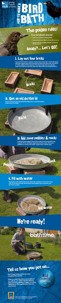 A bird bath is bound to be a splash-hit with your feathered friends and is relatively easy to build! Follow our how to guide and make the perfect bird bath for your feathered friends. This activity will help towards your Wild Challenge so don't forget to let us know when you've completed the activity. Click the link for more information: