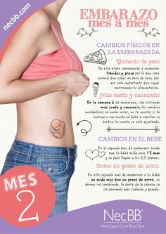 """infografía para pinterest NecBB """"El embarazo mes a mes"""" (Mes 2)"""
