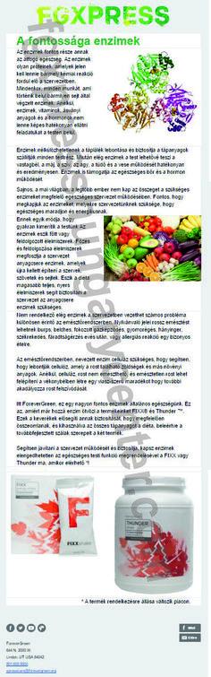 fgxpress-forevergreen-enzimek-full