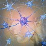 Can Mold Cause Parkinson's Disease? | Got Mold? Disaster Recovery Services