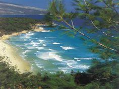 Golden beach Thassos. The blue, green Island of Greece.