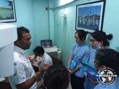 Volunteer in Nepal Kathmandu Dental Program Davina Lam, Chan Chi Yan Justina, Wong Sz Ching Aleen, Cheung Yi Lok Elok from the  University of Hong Kong.  https://www.abroaderview.org/programs/medical-dental/nepal-kathmandu-center-dental-hospital
