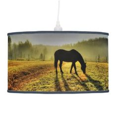 Horse Grazing At Sunrise Lamps