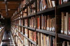 books6 Book Worms, Bookcase, Reading, Home Decor, Decoration Home, Room Decor, Book Shelves, Reading Books, Home Interior Design