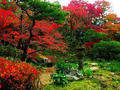 сады китая и японии - Google Search
