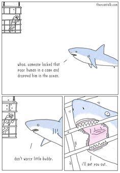 theycantalk:  Shark Rescue