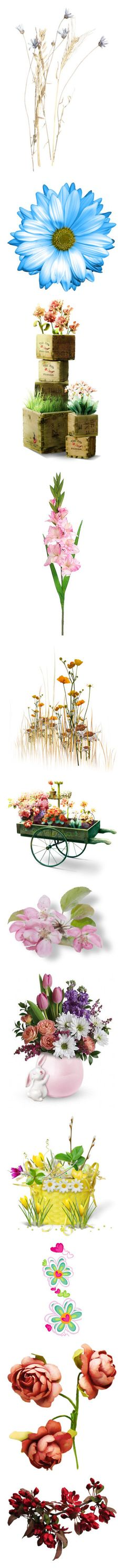 """Mary, Mary Quite Contrary, How Does Your Garden Grow?"" by carla-altum ❤ liked on Polyvore featuring filler, flowers, backgrounds, fillers, garden, effects, embellishment, pink, grass and autumn"