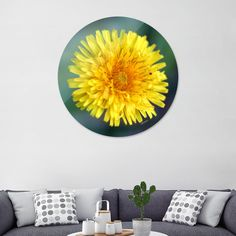 Discover «Yellow Grass Flower», Exclusive Edition Disk Print by Álvaro Daniel González Lamarque - From $85 - Curioos