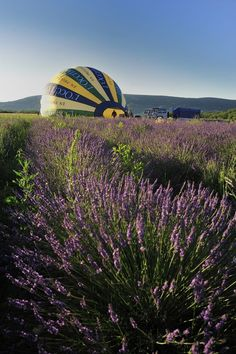 Lets go ballooning with france montgolfières and L'Occitane en Provence