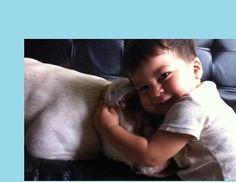 ¿Cuándo podrá mi bebé jugar con un #perro? Blog de BabyCenter @Soy_NormaMora #bebés #mascotas