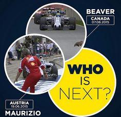 Haha Who Is Next, Keep Fighting, F1 Racing, Formula 1, Haha, Cartoons, Jokes, Baseball Cards, Chistes