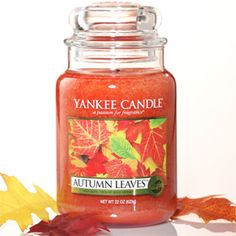 The Complete Range Of Yankee Candles Can Be Found At Best Prices Www